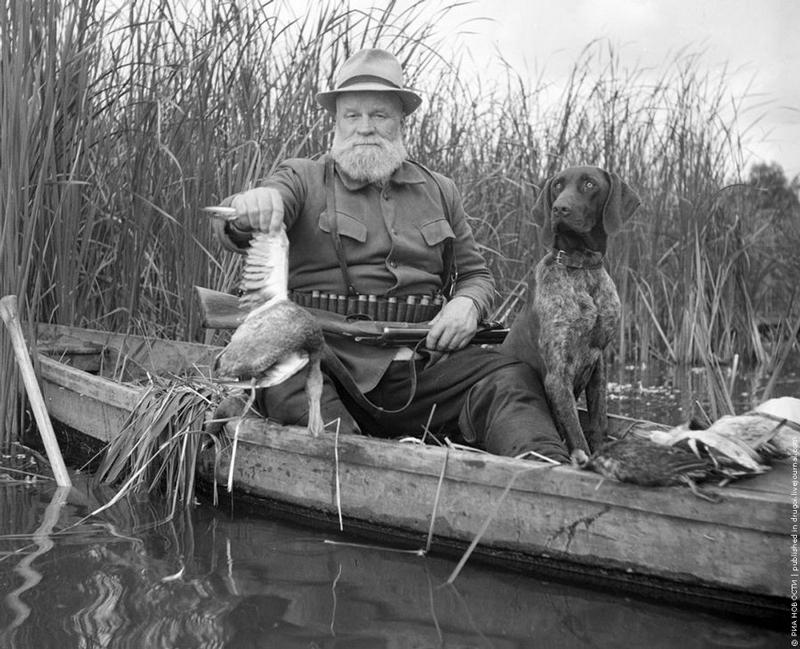 Охотник с подбитой уткой - A hunter with a wounded duck, 1956, Nikolay Kozlovsky.