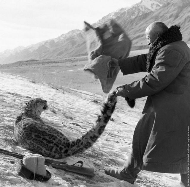 Фантастическое фото- Охотник из Киргизии -  A fantastic photo of a hunter from Kyrgyzstan, 1966, Edward Wilchynski.
