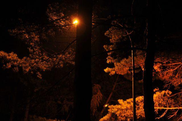 улица, фонарь...