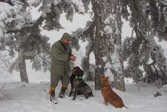 Троица на выгуле в горах Тродоса.