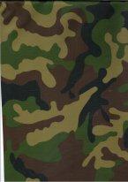 Прикрепленное изображение: NAV 745 НАТО зел..jpg