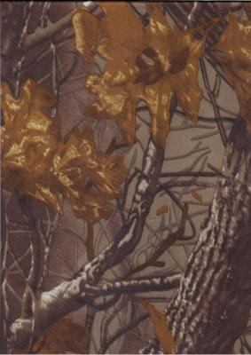 Прикрепленное изображение: LO 120 Лес-осень .jpg