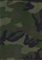 Прикрепленное изображение: SHV 750 Штурман зел. .jpg