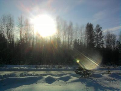 Прикрепленное изображение: солнце, красота.jpg
