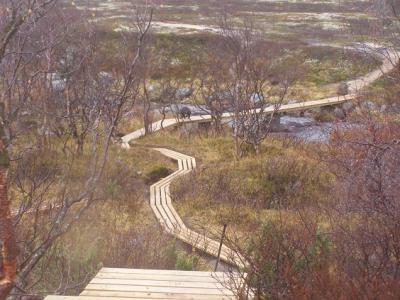 Прикрепленное изображение: лестница трап мост и россомаха.JPG