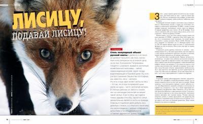 Прикрепленное изображение: fox.jpg
