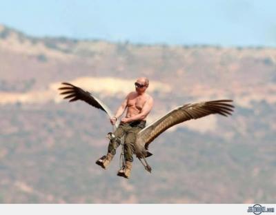Прикрепленное изображение: Putin-Flies-With-Birds.jpg