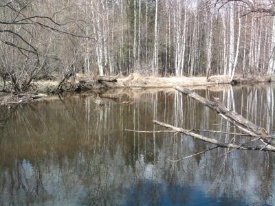 Прикрепленное изображение: скрадок на реке.jpg