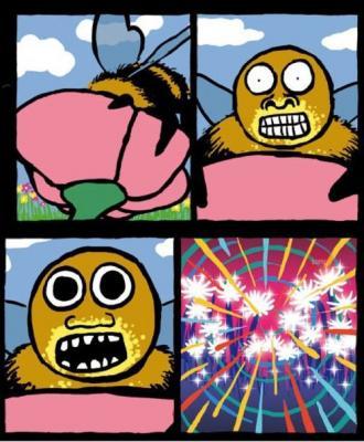 Прикрепленное изображение: пчёлки.jpeg