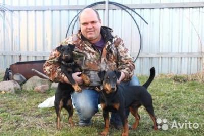 Прикрепленное изображение: Олег и псы.jpg