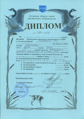 Прикрепленное изображение: диплом.jpg