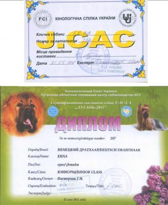 Прикрепленное изображение: диплом 2011.jpg