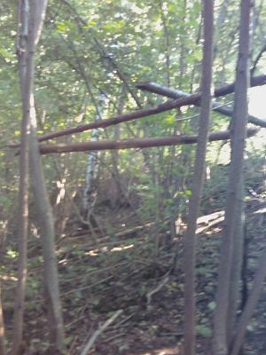 Прикрепленное изображение: ручей2.jpg