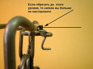 Прикрепленное изображение: Кировские насторожка 2.jpg