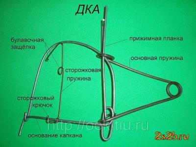 Прикрепленное изображение: krasnoyarsk-kapkany_gumannye_dka_370745 (1).jpeg
