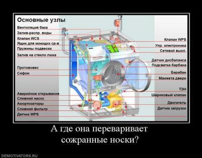 Прикрепленное изображение: про носки.jpg