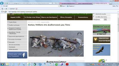 Прикрепленное изображение: Кипр оружие.jpg