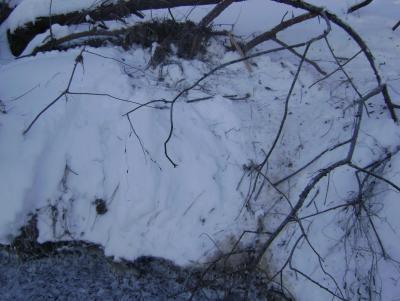 Прикрепленное изображение: 16.12.12г. замёрзший вылаз ниже Березинской лавы.JPG