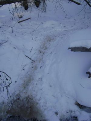 Прикрепленное изображение: 16.12.12г.вылазы у Березинской лавы.JPG